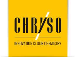Chryso logo