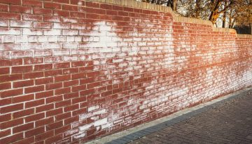 A long red brick wall stained with white efflorescence, a crystalline of salt, formed due to water being present in or on the bricks.